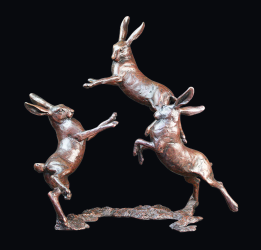 800-Medium-Hares-Playing-we