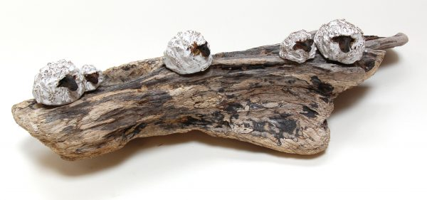 Jane Adams_Original_Ceramic on Driftwood_5 Sheep_19x7x5 (1)