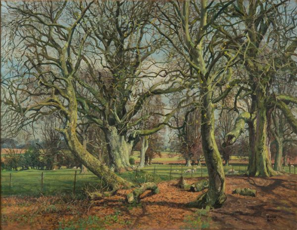 James McIntosh Patrick OBE RSA_Ancient Trees, Mains of Gray_Oils_28x36_37x45