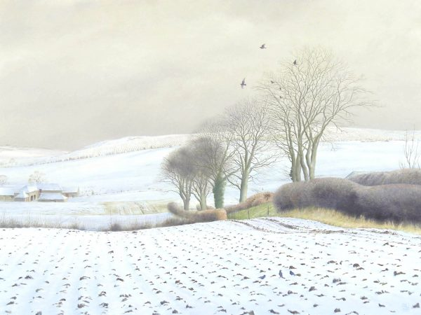 Alister Lindsay_Snow Covered Fields_Oils_12x16_12x16
