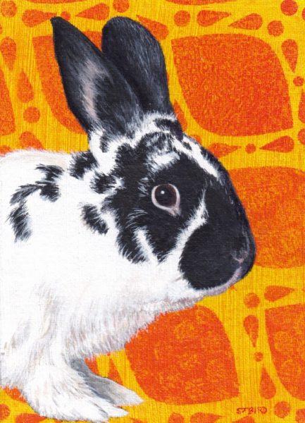 Stanley Bird_Original_Acrylics_24 Carrot Rabbit_img size 7 x 5_fmd 13 x 11 £350