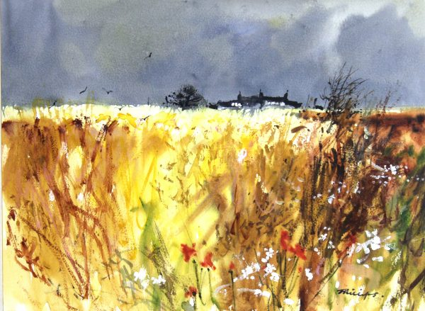 Douglas Phillips_After the Rain_Original_Watercolour (4)