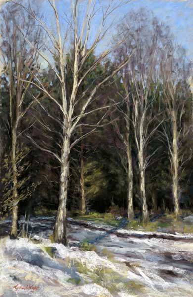 Gina Wright_Winter Forest_Pastel_17.5x11