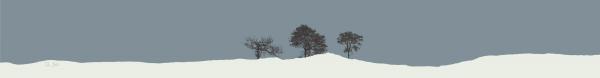BEL11_John Bell_Three Trees, Perthshire