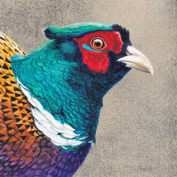 Stanley Bird_Pleasant Pheasant_6x6