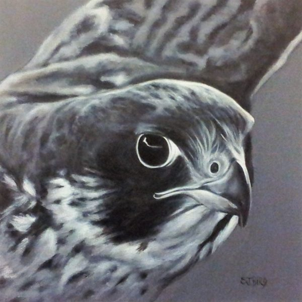 Stanley Bird_Prince of the Winds_acrylics on canvas_16x16_21x21