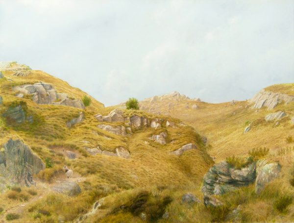 Alister Lindsay_Over Hill and Moss_Oils_11.5x15.25.jpg