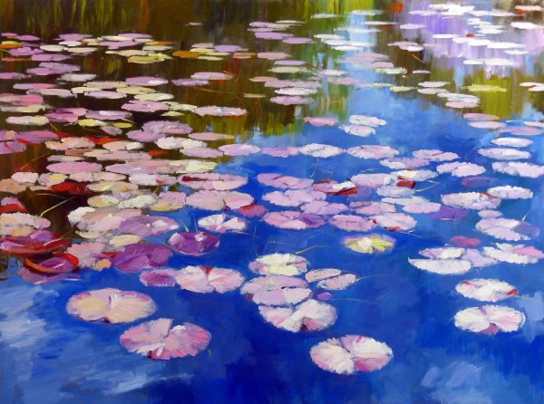 WEB 04.Waterlilies0277