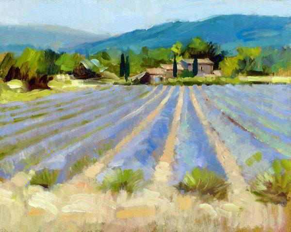 WEB 47.LavenderStudy0291