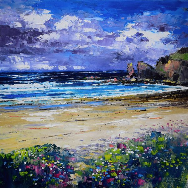 Kevin Fleming_Distant Storm Light, Dalmore Beach, Lewis. canvas size 20x20, oils, 799