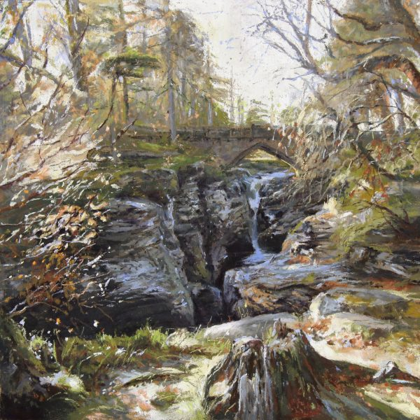 FIONA HALDANE_ORIGINAL_12x12_ Linn of Dee Gorge NOT SIGNED