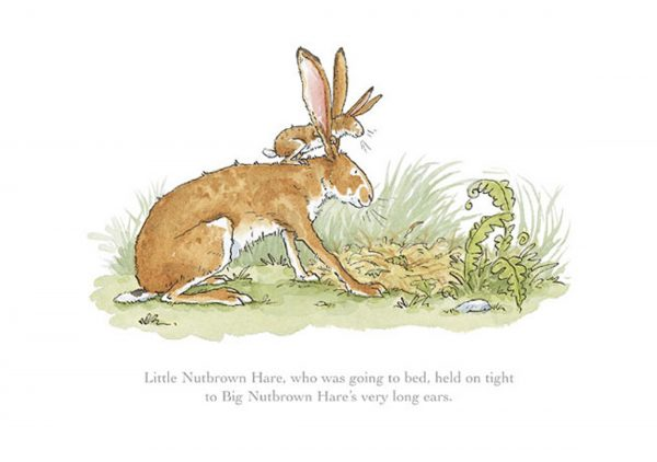 Little Nutbrown Hare Held on Tight