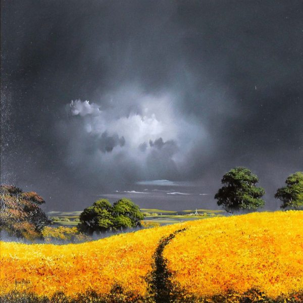 Allan Morgan_Original_Oil_Harvest (yellow) 24x24
