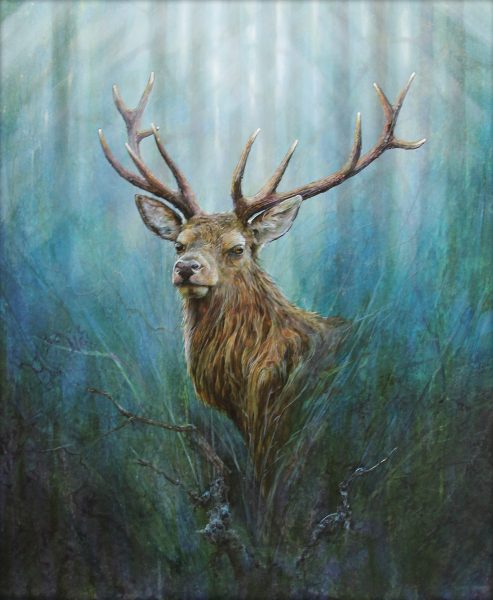 Christopher Sharp_Stag_Oil_31x28_2400 unframed