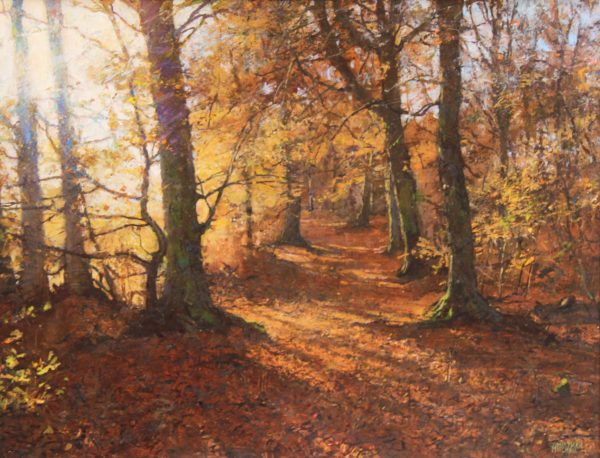 Jonathan Mitchell_Autumn Light, Caddam Wood_58x45_78x65_1950_unframed