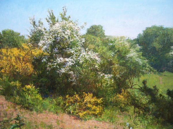Jonathan Mitchell_Hawthorn and Gorse, Galloway_42x30_62x50_1100_unframed