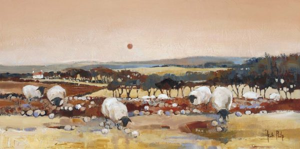 Sheep at Dusk_22x11_Ltd Edition of 250